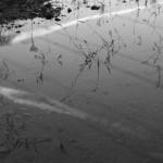 WATER REFLET 11