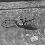 water chaise
